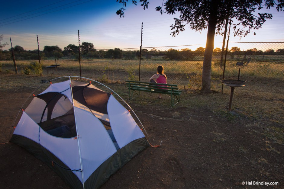 Place your tent next to the perimeter fence for a great chance of seeing jackals and hyenas stroll by.