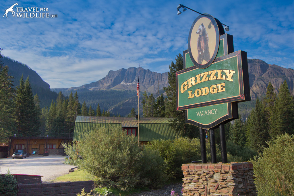 You wont find a much better view in the valley than from the Grizzly Lodge in Silver Gate