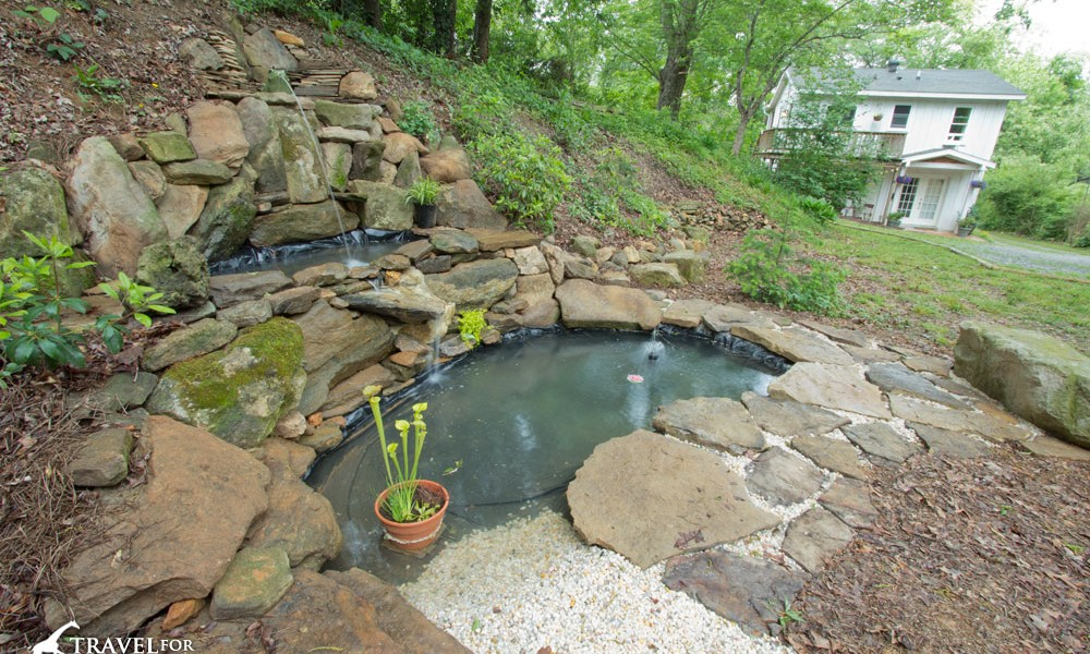 Our completed pond with beach, bog plants and water fountain