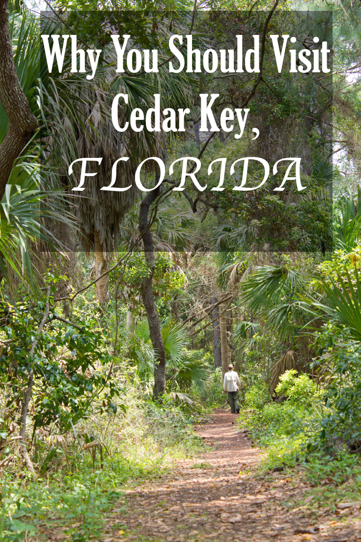 Why cedar key is our favorite place to go kayaking with for Why live in florida