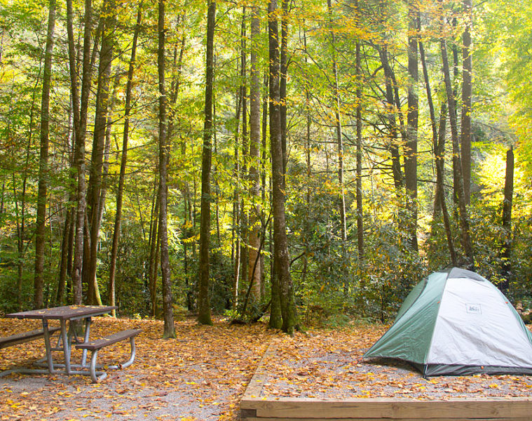 Campsite at Cataloochee, Smoky Mountains